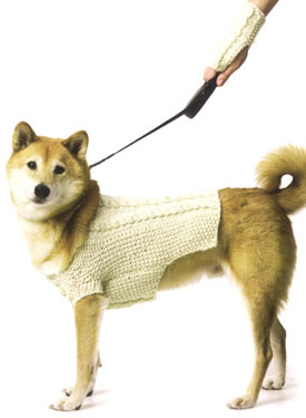 Irish Fisher Dog and Friend Pattern