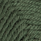 Evergreen in Wool of the Andes Worsted Yarn