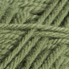 Fern in Wool of the Andes Worsted Yarn