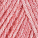 Blossom Heather in Wool of the Andes Sport Yarn