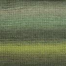 Seaweed in Chroma Fingering Yarn