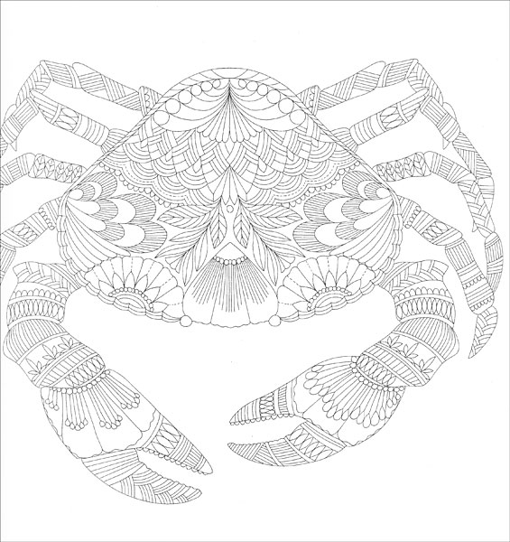 Tropical World Coloring Book From KnitPicks Knitting
