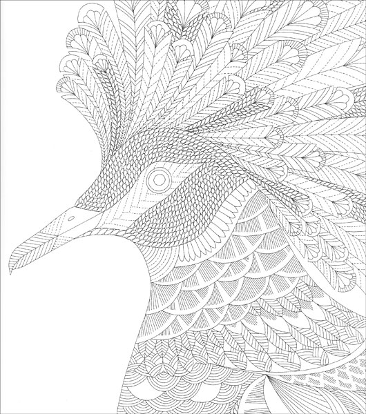 Tropical World Coloring Book : Tropical World Coloring Book from KnitPicks.com Knitting by Millie Marotta On Sale