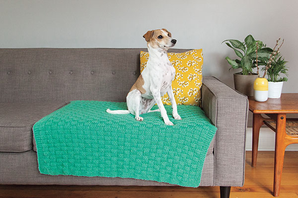 Comfort Knit Pet Blanket