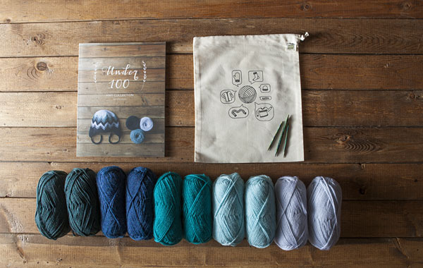 Petite Projects Kit