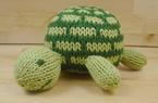 Tiny Turtle Pattern