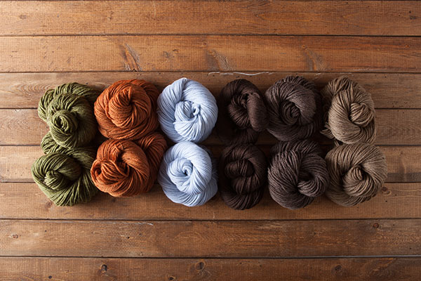 Wool of the Andes Superwash Bulky - Beatrix Potter Value Pack