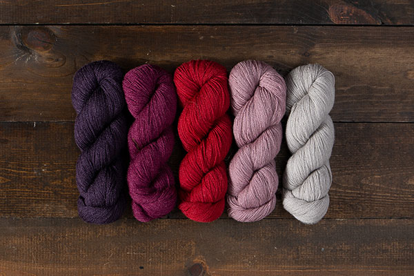 Aronia - Gloss Lace Value Pack