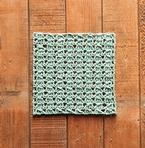 Sloped Lines Dishcloth Pattern