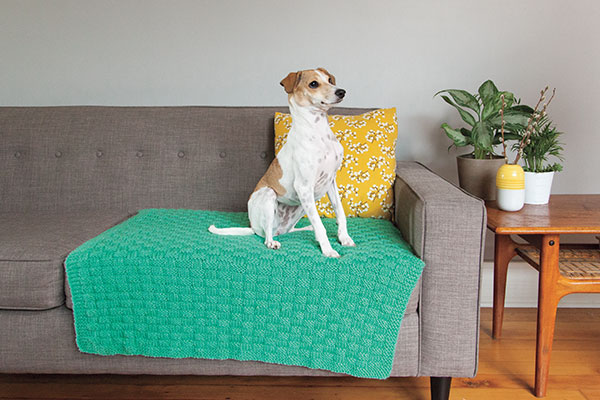 Comfort Knit Pet Blanket Pattern