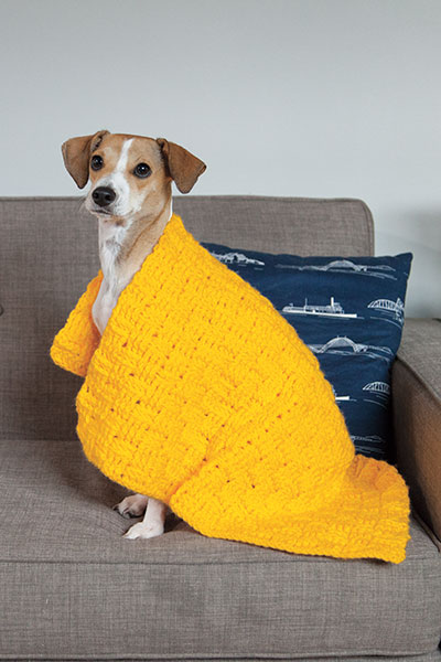 Comfort Crochet Pet Blanket Pattern