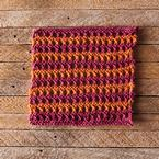 Tropical Vacation Dishcloth Pattern