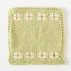 Daisies Dishcloth Pattern