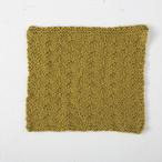 Sasa Dishcloth  Pattern