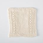 Garden Window Dishcloth Pattern