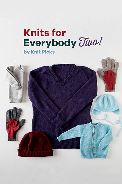 Knits for Everybody Two! eBook